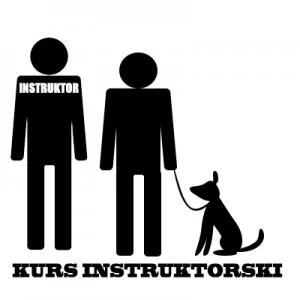 instruktormini